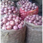 Onion big size 50kg ,  Special for Hotels  Restaurants  Catering & Mess only