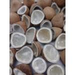 Dry coconut (kopra)